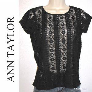 Ann Taylor Loft Petite Lace Stretch Blouse